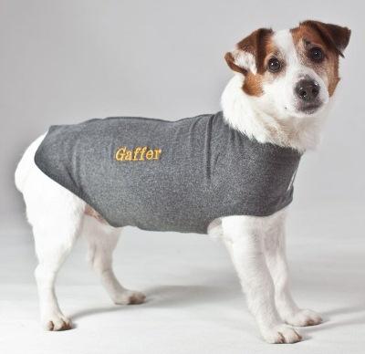 Thundershirts and celebradogs for Custom dog face t shirt