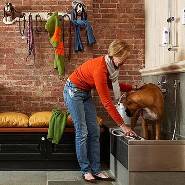 Dog Centric Homes Part Deux