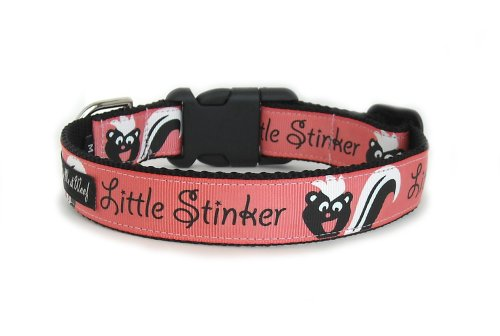 Little Stinker Collar