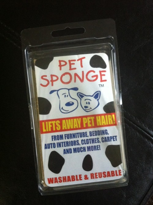 Pet Sponge 1