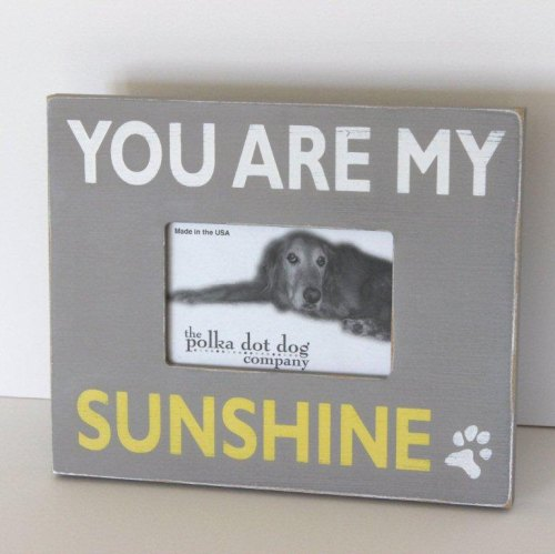You Are My Sunshine Dog Frame