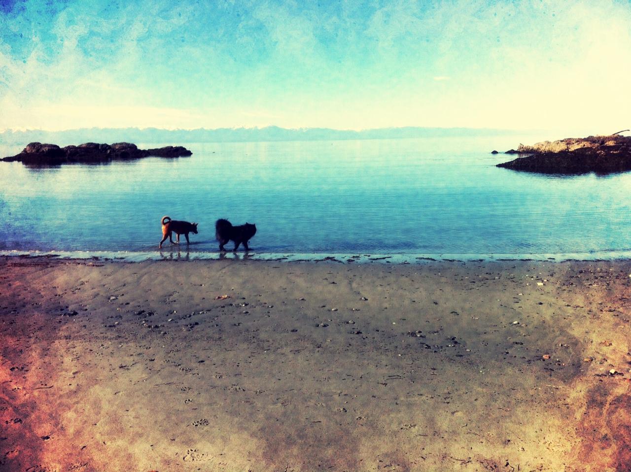 San Juan Islands 3
