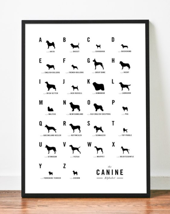 Dog Alphabet Nursery Poster