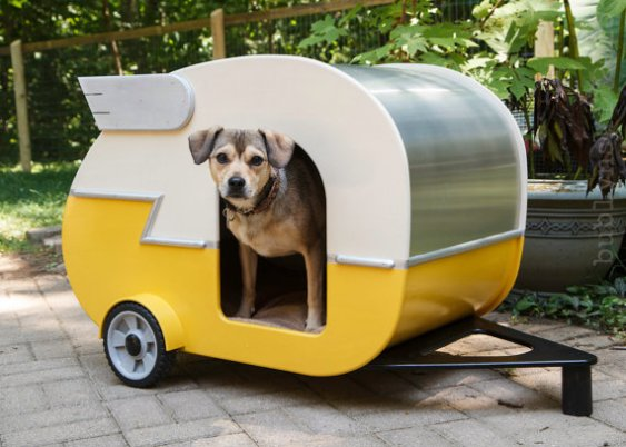 Indoor Camper Doghouse