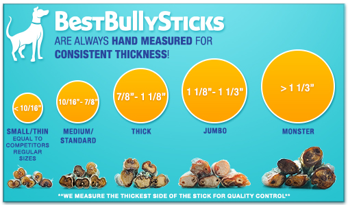 Bully-Sticks-Thickness-Scale