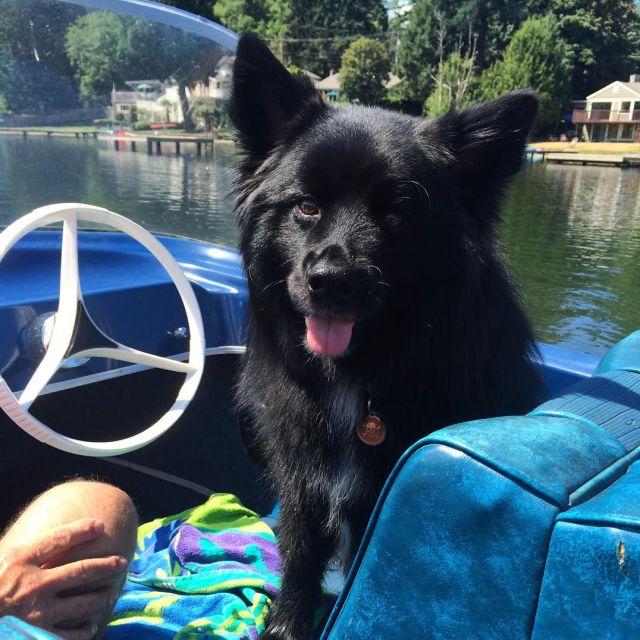 Teton on a Boat